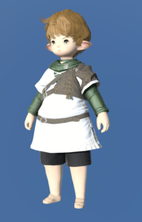 Model-Toxotes Tunic-Male-Lalafell.png