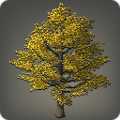 Autumnal Ginkgo Tree Icon.png