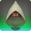 Filibuster's Hood of Healing Icon.png