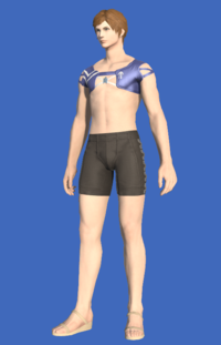 Model-Blue Summer Top-Male-Hyur.png