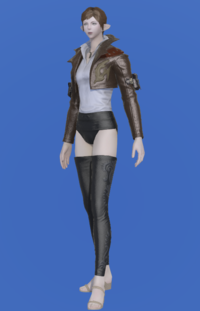 Model-Anemos Jacket-Female-Elezen.png