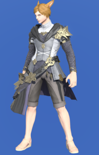 Model-Brand-new Tabard-Male-Miqote.png