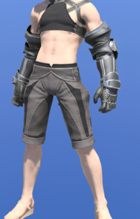 Model-Lord's Gauntlets-Male-Miqote.png