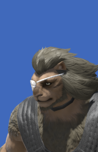 Model-Gryphonskin Eyepatch-Male-Hrothgar.png