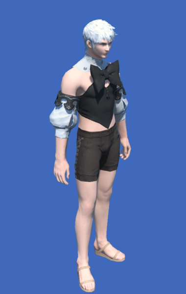 Model-Bunny Chief Bustier-Male-Hyur.png
