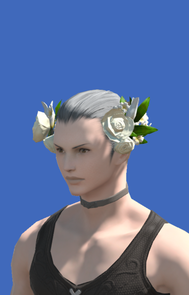 Model-Veil of Eternal Passion-Male-Hyur.png