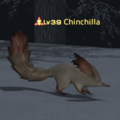 Chinchilla.png