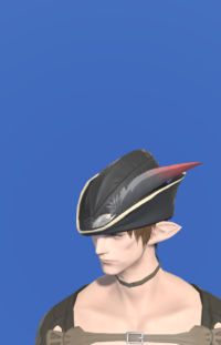 Model-Cashmere Hat of Aiming-Male-Elezen.png