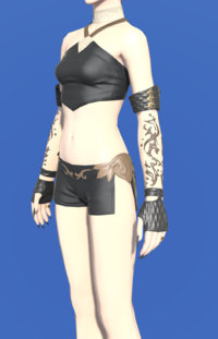 Model-Republican Signifer's Fingerless Gloves-Female-Hyur.png