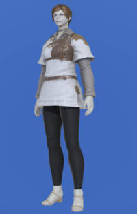 Model-Aetherial Ranger's Tunic-Female-Roe.png