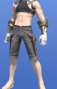 Model-Prototype Midan Gloves of Healing-Male-Miqote.png