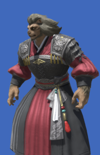 Model-Far Eastern Patriarch's Tunic-Male-Hrothgar.png