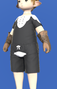Model-Ivalician Enchanter's Gloves-Male-Lalafell.png