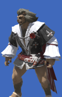 Model-Coat of the Lost Thief-Male-Hrothgar.png