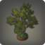 Parkside Tree Icon.png