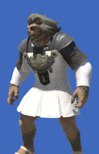 Model-Aetherial Cotton Tabard-Male-Hrothgar.png