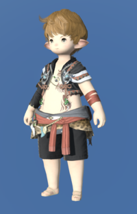 Model-Anemos Pacifist's Vest-Male-Lalafell.png