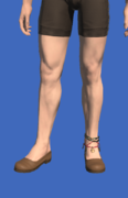 Model-Dalmascan Leather Shoes-Male-Hyur.png