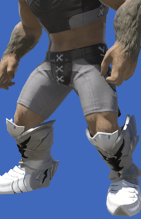 Model-Tarnished Feet of the Silver Wolf-Male-Hrothgar.png