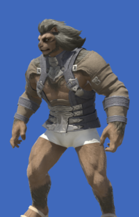 Model-Aetherial Raptorskin Harness-Male-Hrothgar.png