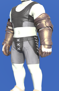 Model-Aetherial Bronze Gauntlets-Male-Roe.png