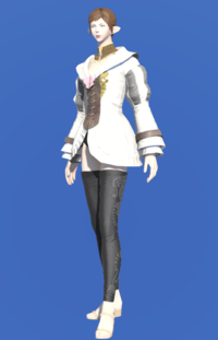 Model-Woolen Bliaud-Female-Elezen.png