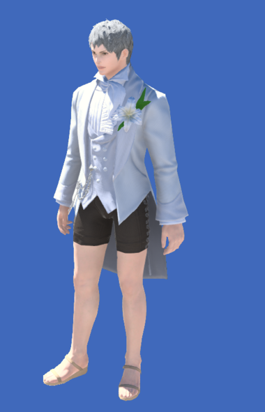 Model-Tailcoat of Eternal Passion-Male-Hyur.png