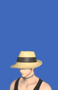 Model-Forager's Hat-Male-Hyur.png