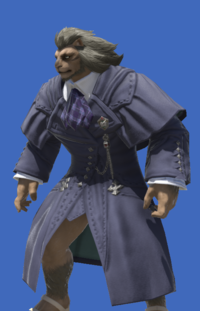 Model-Sharlayan Pathmaker's Coat-Male-Hrothgar.png