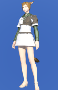 Model-Toxotes Tunic-Female-Miqote.png