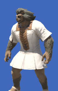 Model-Cotton Tabard-Male-Hrothgar.png