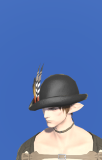 Model-Archaeoskin Cloche-Male-Elezen.png
