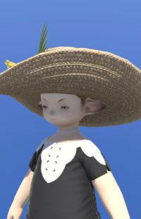 Model-Oschon Roselle Capeline-Male-Lalafell.png