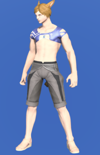 Model-Blue Summer Top-Male-Miqote.png