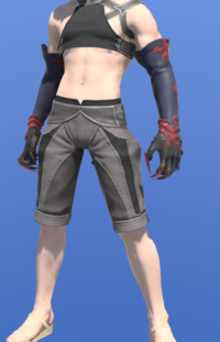 Model-Gloves of the Black Griffin-Male-Miqote.png