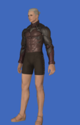 Model-Late Allagan Armor of Scouting-Male-Hyur.png