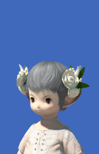 Model-Veil of Eternal Passion-Male-Lalafell.png