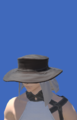 Model-Voeburtite Hat of Casting-Male-Miqote.png
