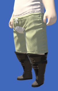 Model-Atrociraptorskin Boots of Crafting-Male-Lalafell.png