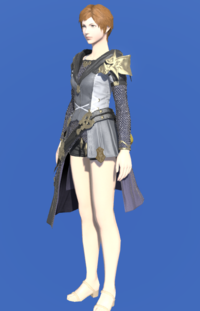 Model-Brand-new Tabard-Female-Hyur.png